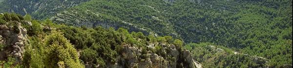 Vallibona y el barranco del río Cérvol