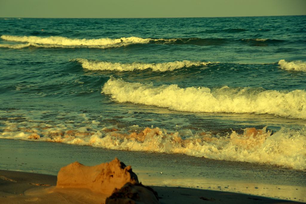 La mejor ola. Autor, Gonzalo Caro Sagüés