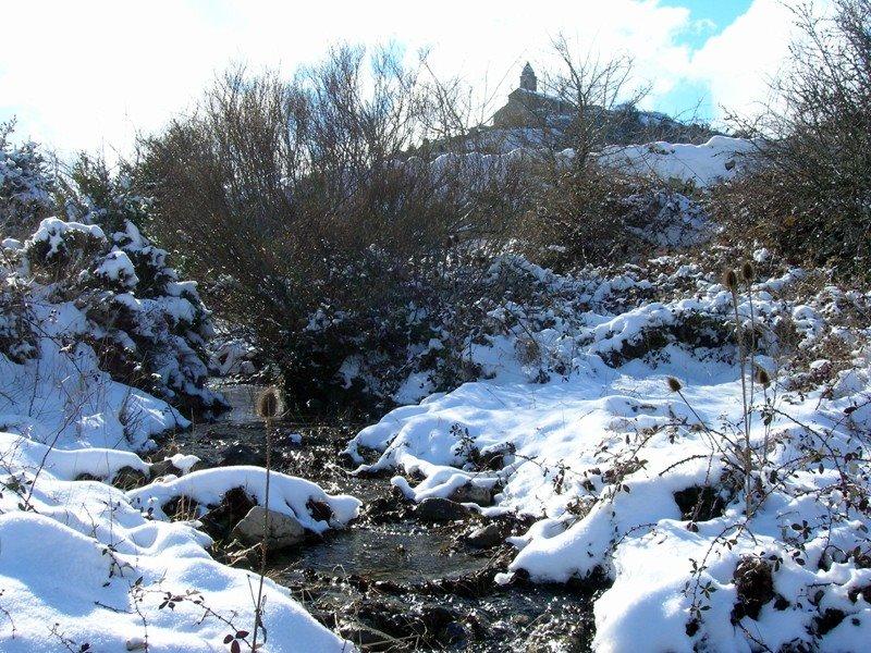 El Boixar en invierno. Autor, Angel Salom