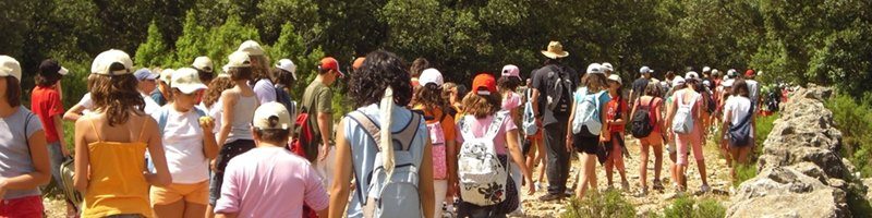 800x200 colonias verano 2015 Castellón en Ruta 5