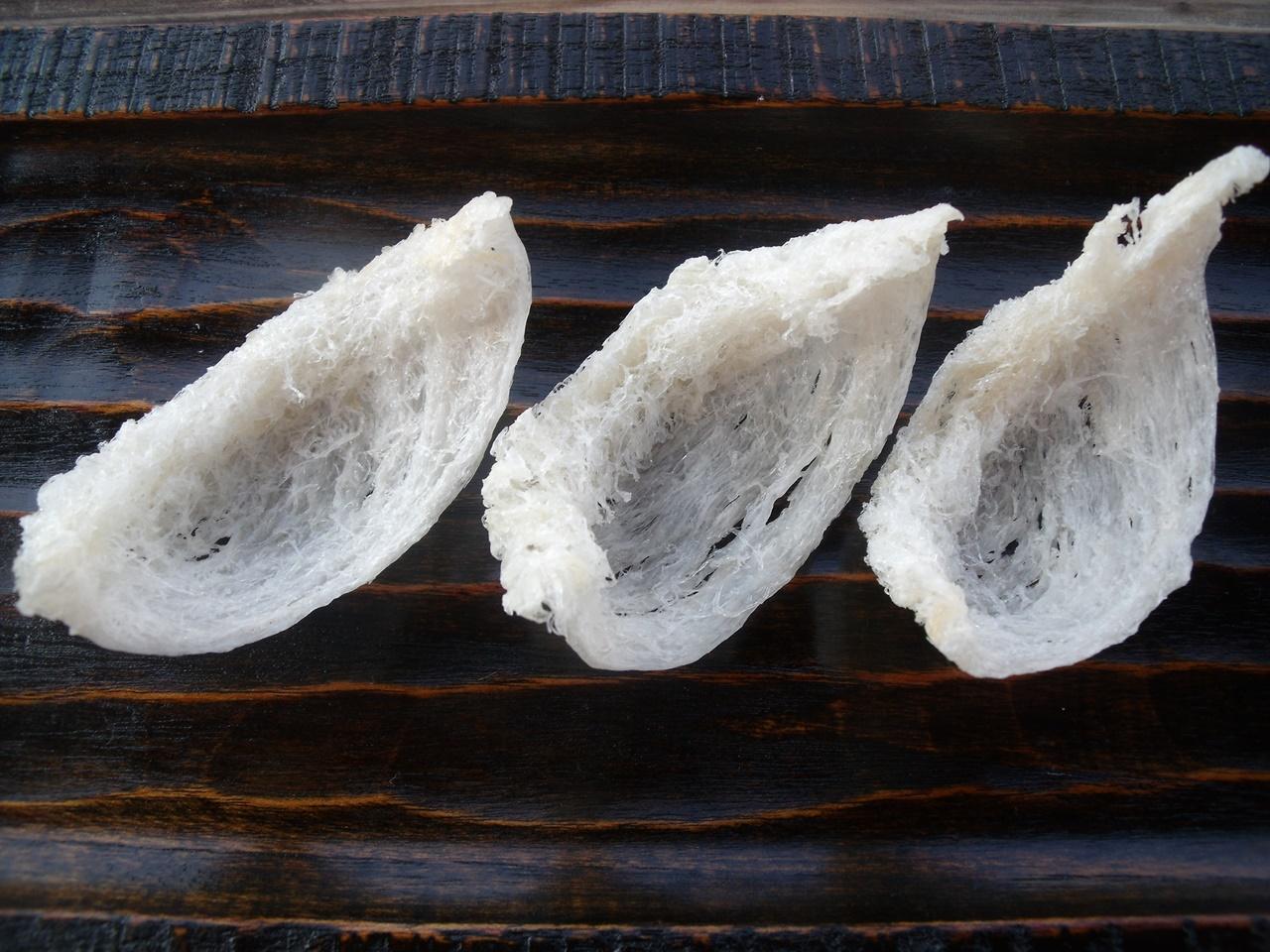 Nidos del vencejo de las cuevas, ingrediente básico para la famosa sopa de nidos de golondrina. Autor, ReformaImufomot