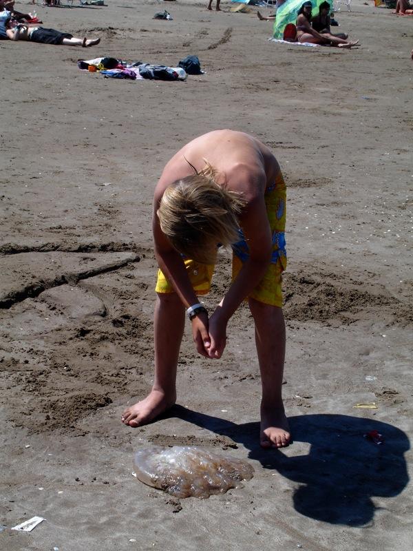7. Bañista y medusa varada en la orilla. Autor, Andrea Small