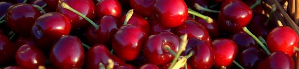 El cerezo, placer para la vista, para el paladar y para el cuerpo