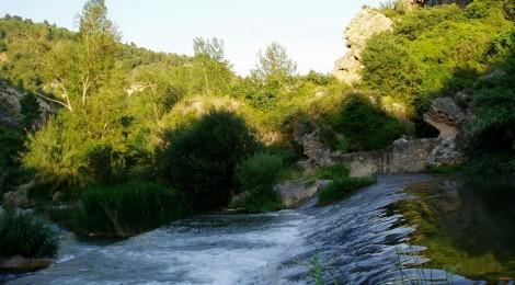 El agua, fuente de la vida