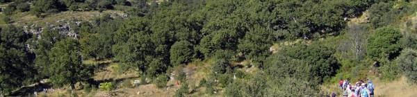 «Estoy con la naturaleza» Día Mundial del Medio Ambiente en el Barranc dels Horts