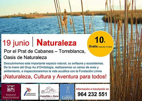 Por el prat de cabanes torreblanca oasis de naturaleza - El tiempo en torreblanca castellon ...
