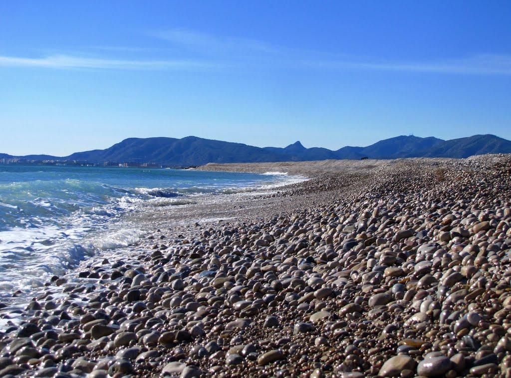 El litoral del Prat. Autor, Salvador Roig i Seró