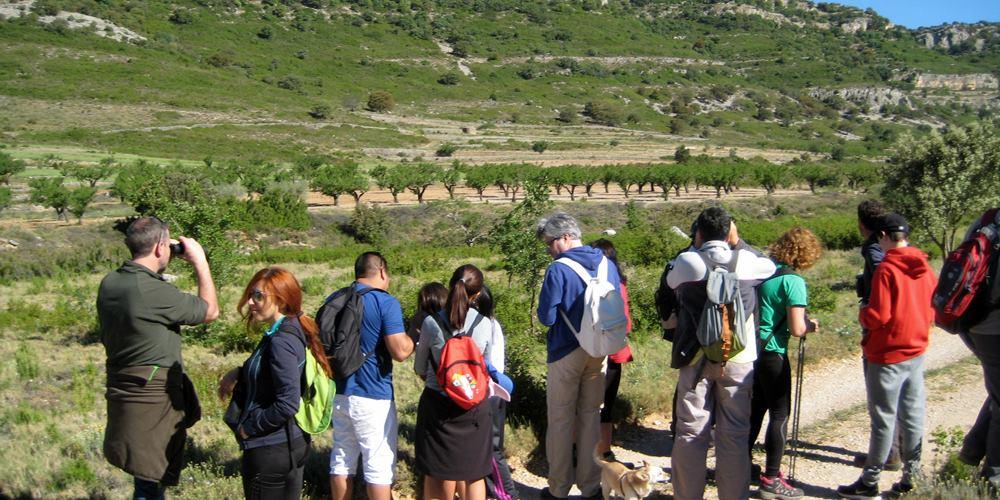 ficha-1000x500-birding-sierra-de-irta-aguila-perdicera-castellon-naturaleza-turismo-familiar-comunidad-valenciana