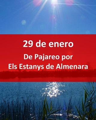 slider-PAJAREO-ULLAL-ESTANYS-DALMENARA-CASTELLON-EN-RUTA-Comunidad-Valencia-birding-ornitología