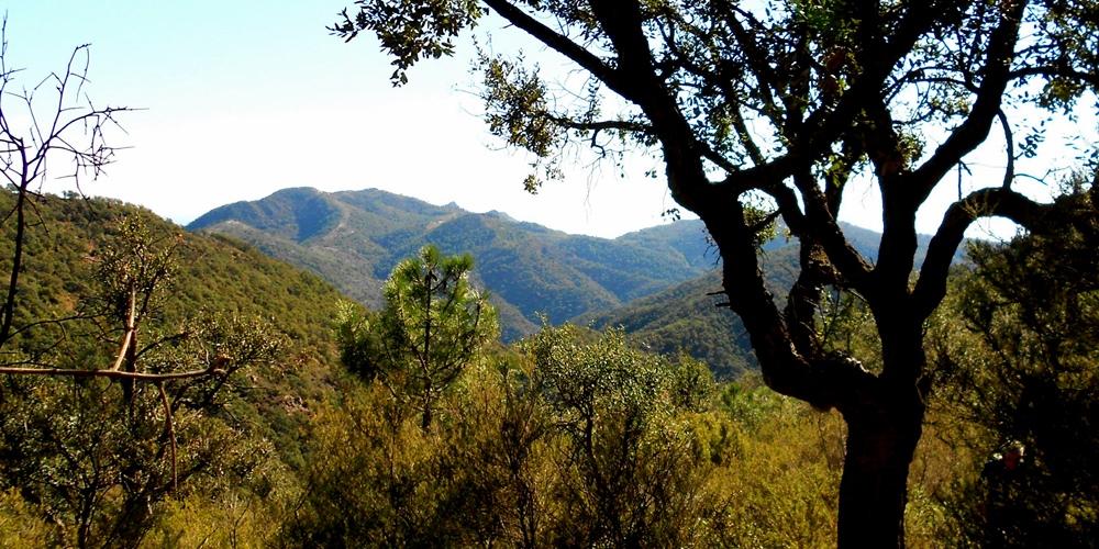 Sierra de Espadán Gaibiel