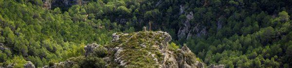 Por los paisajes de la Tinença de Benifassà