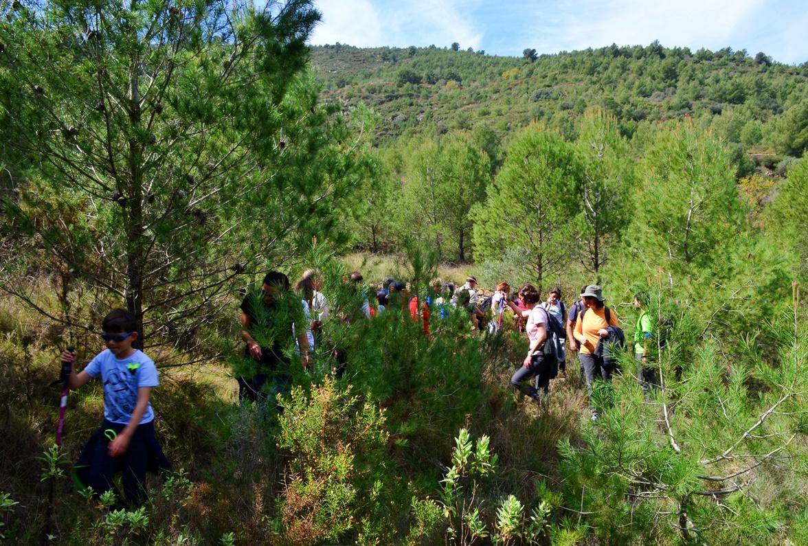 Ruta por el río Lucena en Figueroles 2