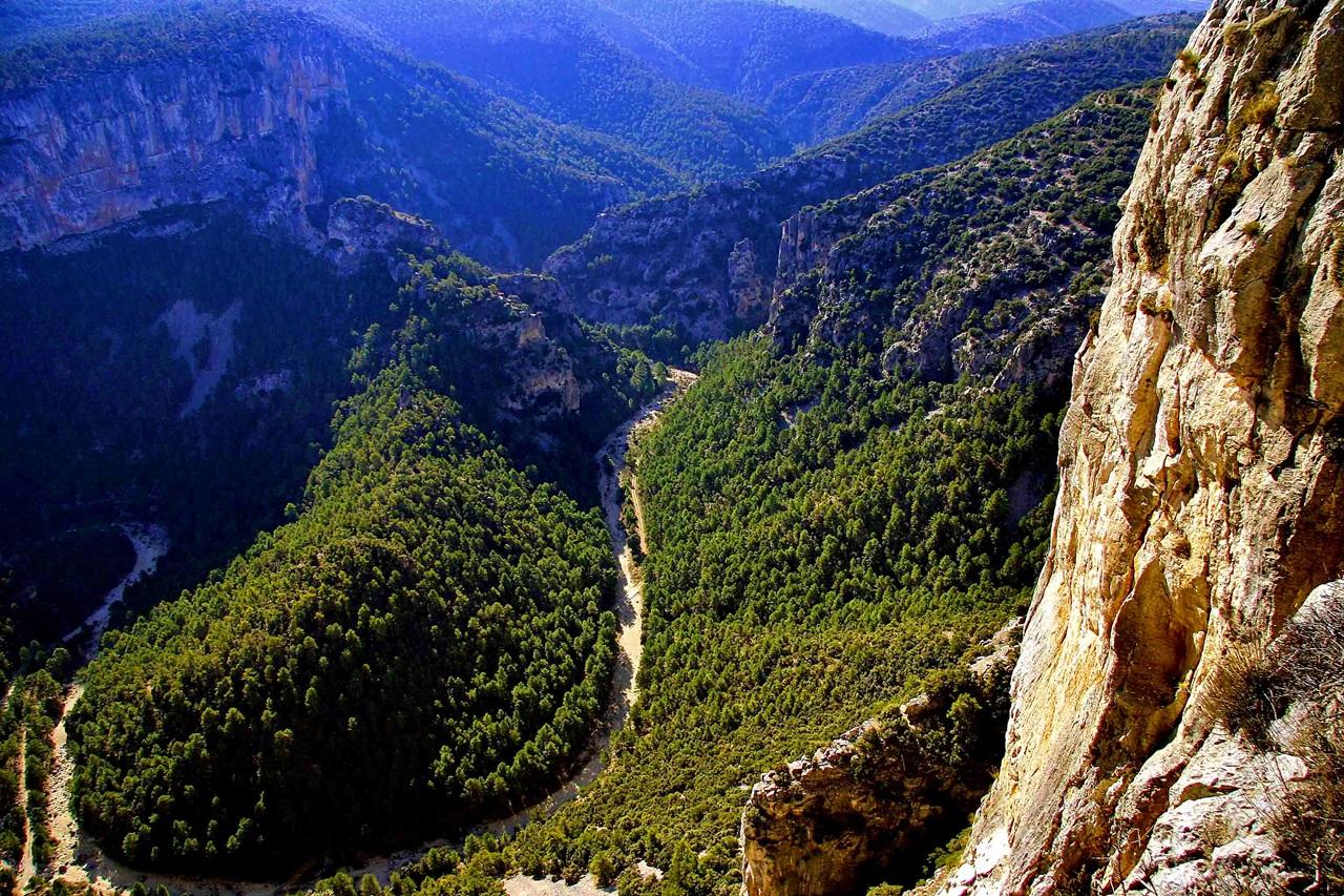 Ruta por la Rambla de Celumbres el territorio de los buitres 2