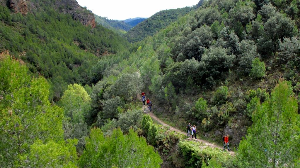 Senderos de la Sierra de Espadán. Autor, Manel
