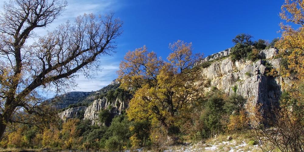 Barranc dels Horts Ecoturismo Castellón en Ruta Naturaleza