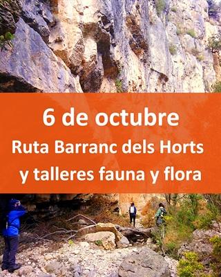 barranc-dels-horts-bosque-comunitat-valenciana