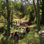 ruta benafigos ortisella castellon ecoturismo
