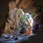 cueva castellon fauna troglobia