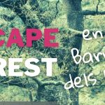 escape forest barranc horts
