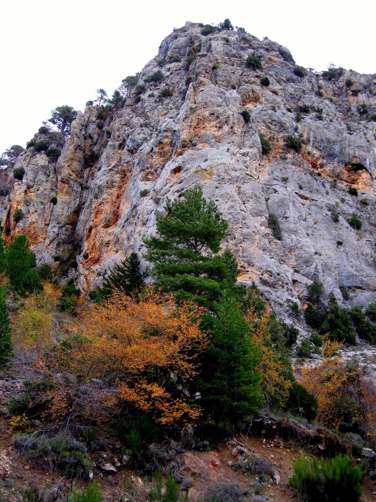 Sierra de El Toro. Autor, eltoro1009.blogspot.com.es