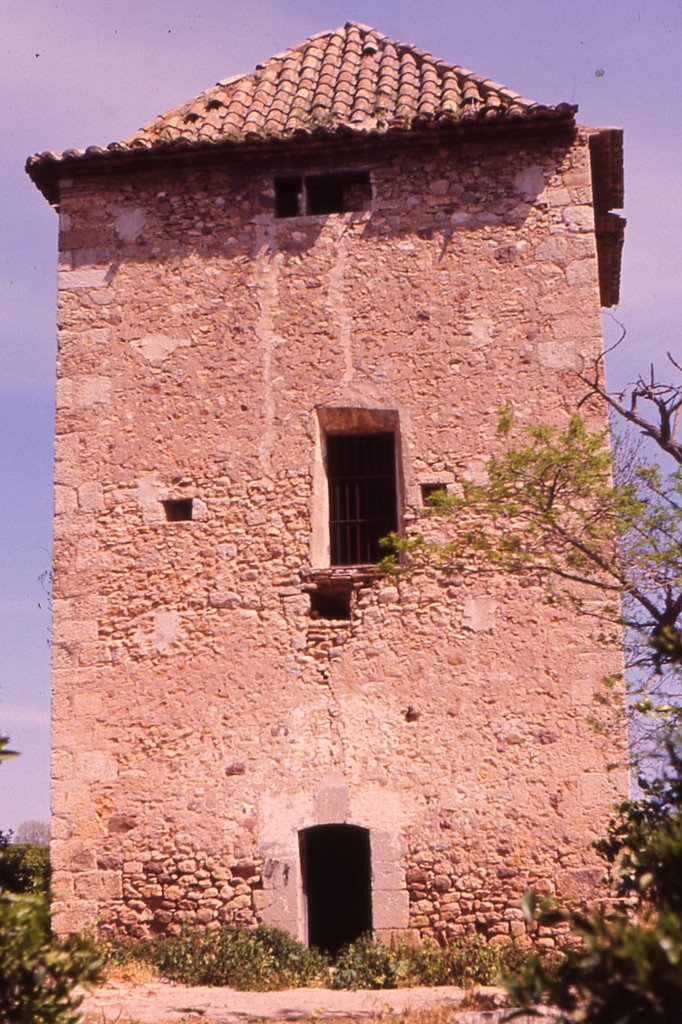 Torre de Tadeo. Autor, Fernando Conde Montesinos