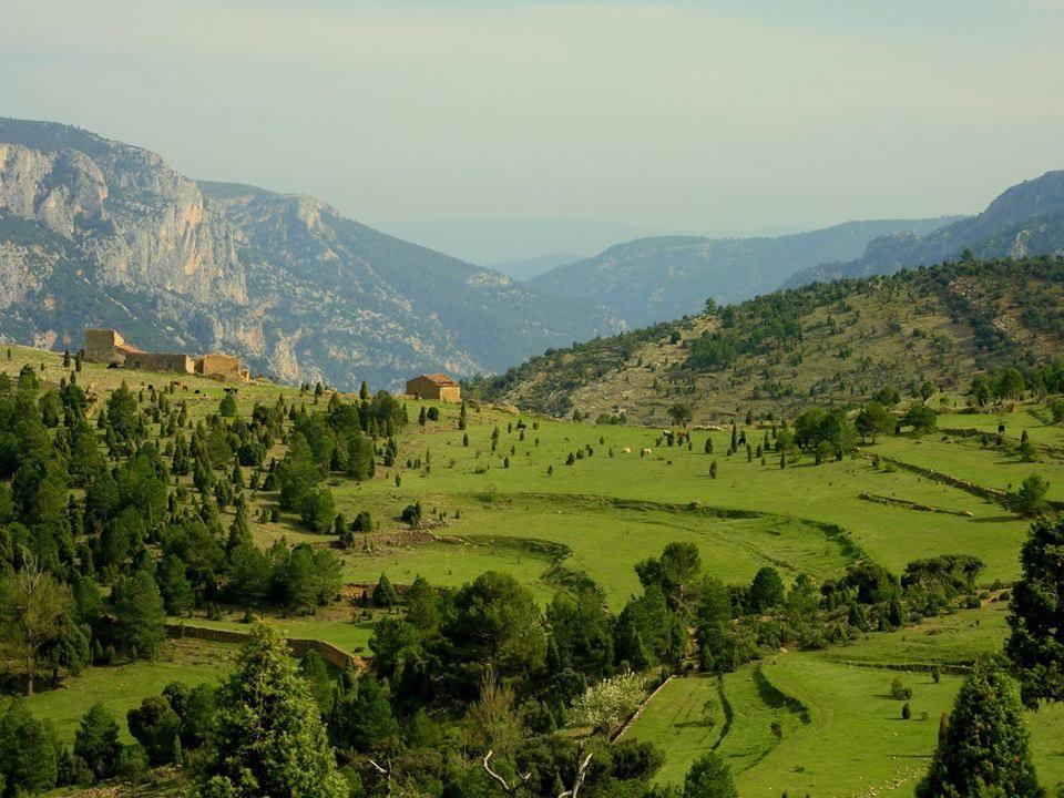 Mas de campos junto al riu Montlleó, comarca L'Alcalatén. Autor David Hornero