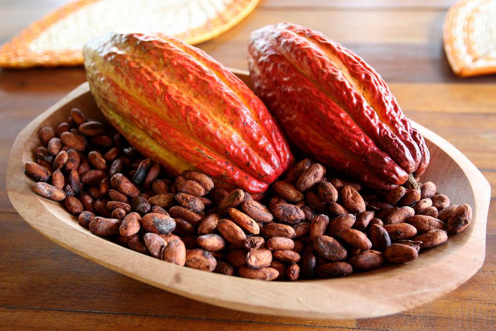 6. Cacao y semillas de cacao. Autor, Photos Gobva