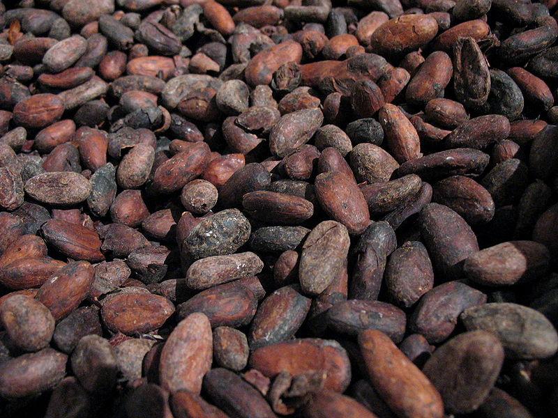 Granos de cacao. La moneda de los aztecas. Autor, SuperManu