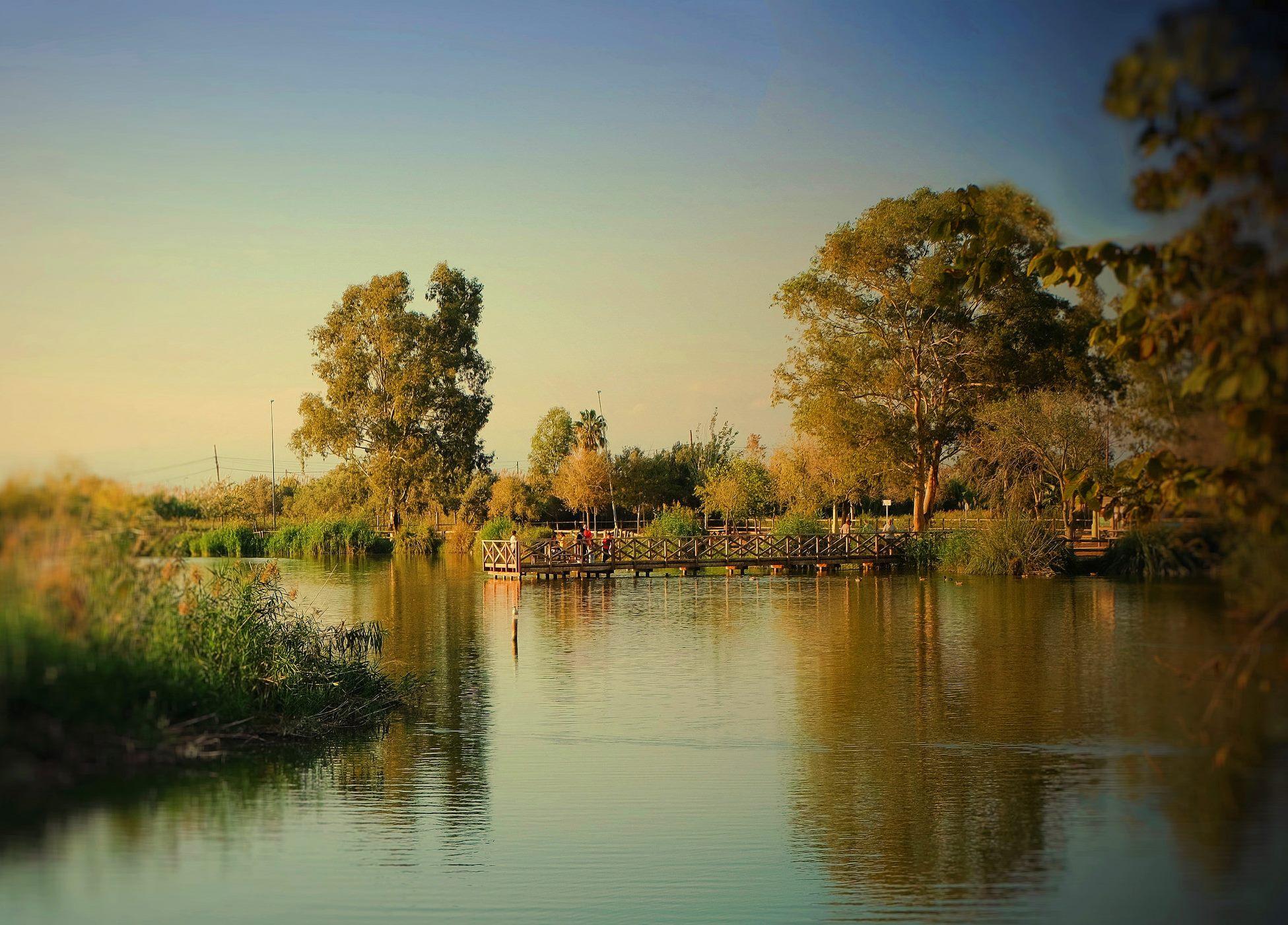 L'estany de Nules. Autor, Jose Medin