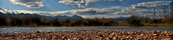 Zonas húmedas litorales: el marjal de Peñíscola
