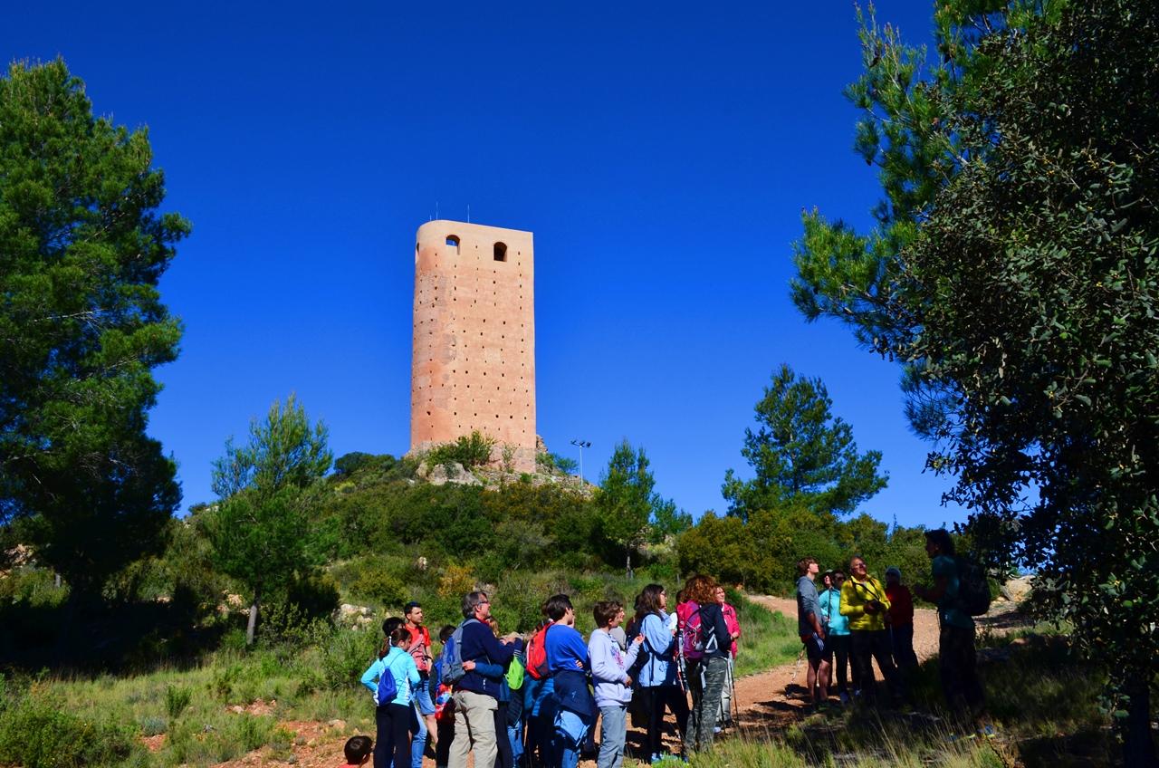 Ruta por Vall de Almonacid, entre olivos y almorávides
