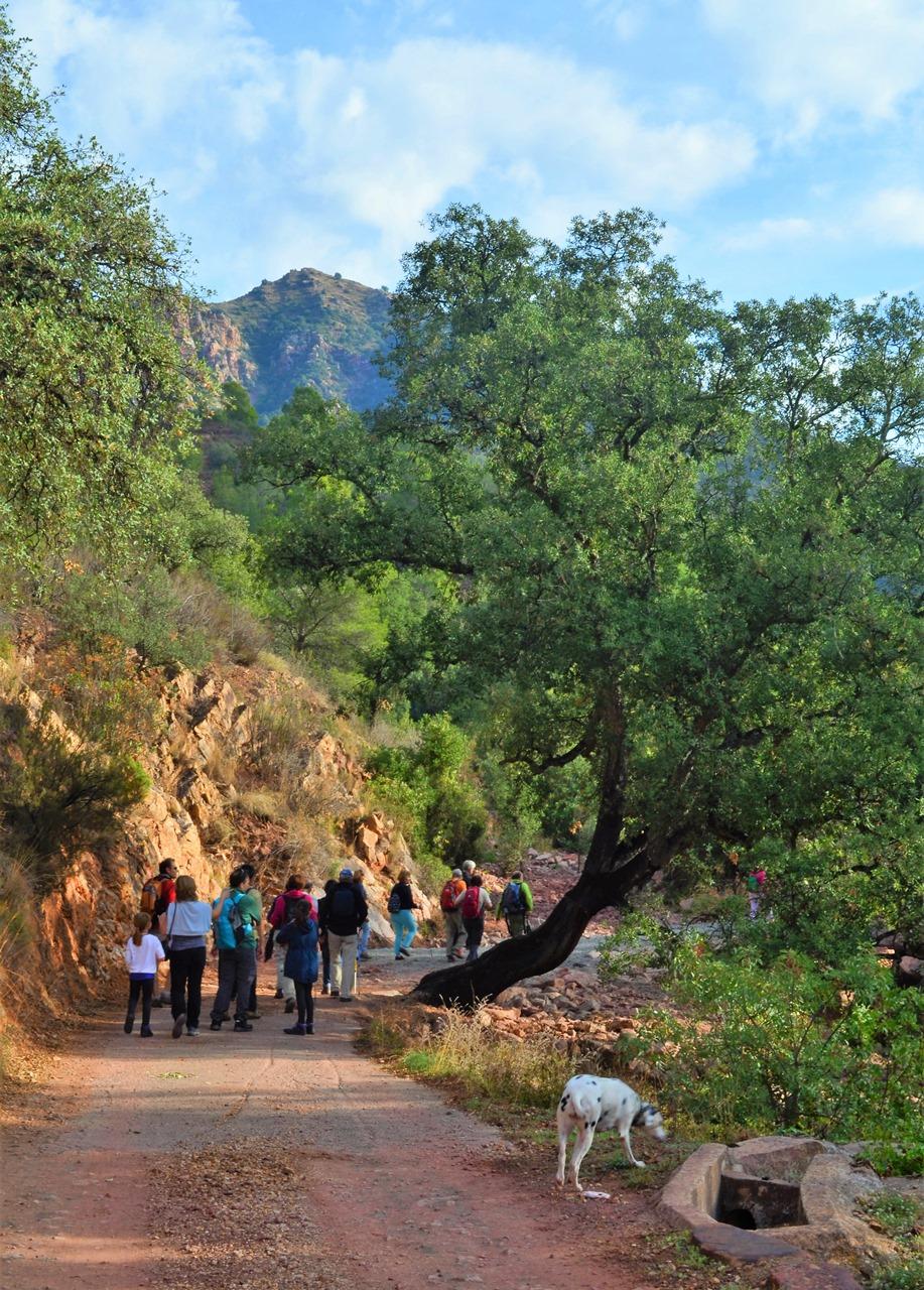 Ruta por el barranco de Almanzor en Almedíjar
