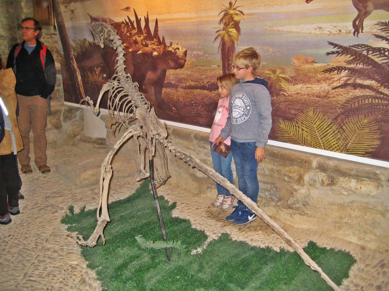 Cinctorres museo dinosaurio