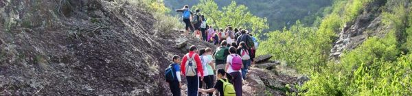 Ruta por Algimia de Almonacid: Fuente de la Calzada – Cueva del Estuco – Barranco de Aguas Negras – Inscripción romana