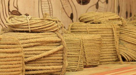 La industria del cáñamo en Castellón