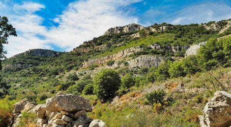 Castellón en Ruta: Mas Vell