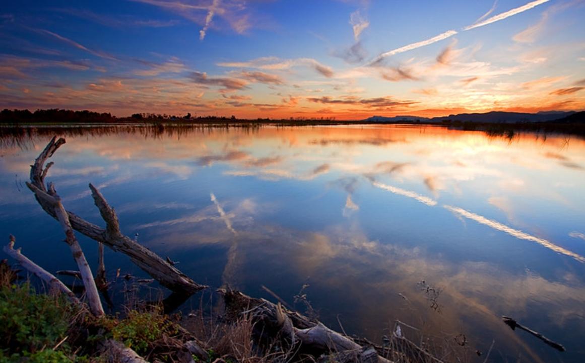 almenara marjal estany